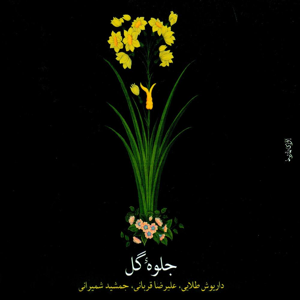 جلوهٔ گل